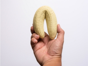 Hard And Fascinating Facts About Your Man S Penis