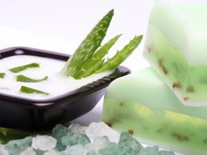 Aloe Vera Shampoo For Shiny And Stronger Hair