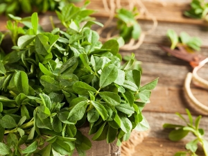 How Treat Acne Scars With Fenugreek Leaves