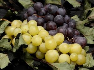 Best Homemade Grape Face Packs