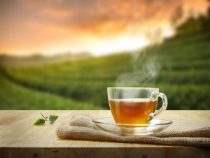 Different Types Of Tea You Can Have When Trying For Weight Loss