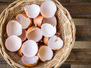 Ways To Use Egg Shell For Skincare