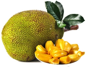 Health Tips Eat Jackfruit For Weight Loss