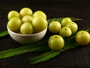 Amla Benefits For Hair How To Use