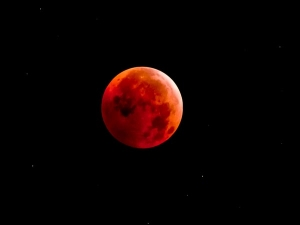 Lunar Eclipse 2019 Impact Of Lunar Eclipse On Zodiac Signs
