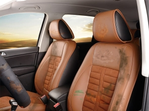 Effetive Ways To Clean Cloth Car Seats