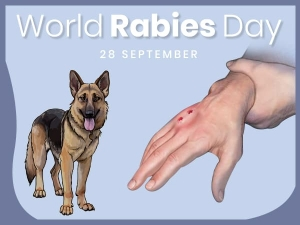 Rabies Symptoms Causes Treatment And Prevention