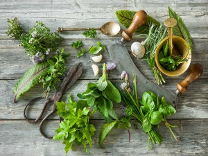 Ayurveda Herbs To Lose Weight Without Workout