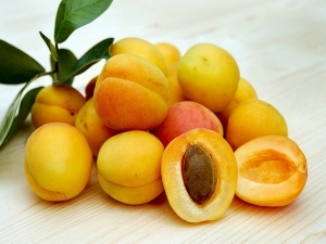 Can Apricot Seeds Treat Cancer