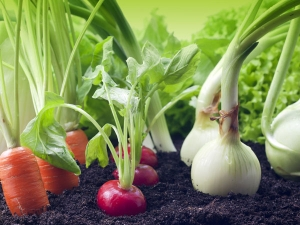 Organic Gardening Benefits And Tips