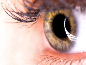 Everyday Habits That Can Save Your Eyesight