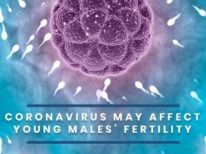 Covid 19 Does The Coronavirus Affect Male Fertility