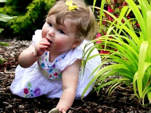 Pica In Children Causes Symptoms And Treatment