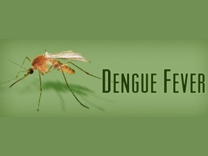 Avoid Dengue By Preventing Mosquito Bites