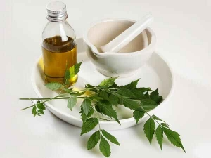 Incredible Benefits Of Neem For Hair