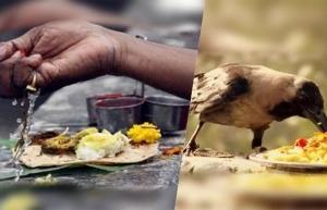 Pitru Paksha 2020 Shraddha Dates Puja Vidhi Rituals And How To Perform In Kannada
