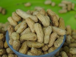 Health Benefits Of Eating Boiled Peanuts In Kannada