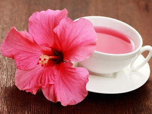 How To Make Hibiscus Oil At Home To Hair Fall