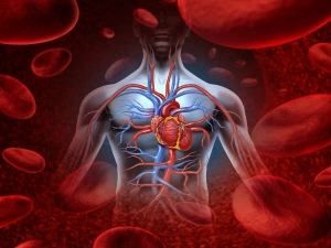 Natural Blood Thinning Foods To Reduce Blood Clots