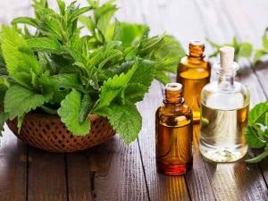 Essential Oils To Get Rid Of Headaches In Kannada