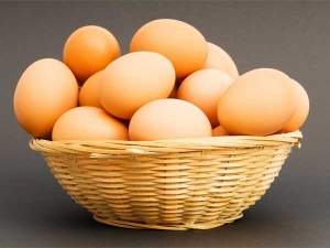 Is It Safe To Eat Expired Eggs Explained In Kannada