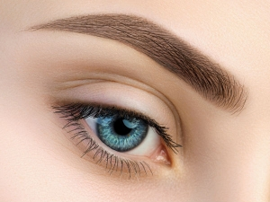 Castor Oil Coconut Oil And Olive Oil Mix To Grow Thick Eyebrows In Kannada