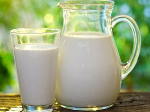 Tetra Milk Vs Packet Milk Is Carton Milk Better Than Packet Ones