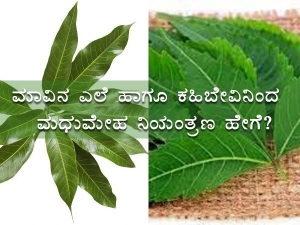 How To Use Mango Leaves And Neem To Control Sugar In Kannada