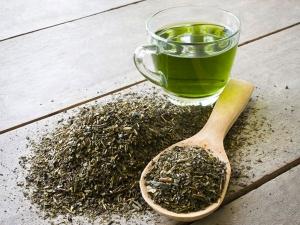 The Beauty Benefits Of Green Tea In Kannada