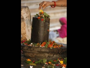 Shravana Masa Offer These Divine Flowers To Worship Lord Shiva