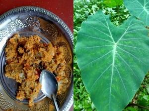 Taro Leaf Pathrode Health Benefits In Kannada