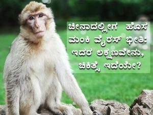 China Reports First Human Death From Monkey B Virus Know What It Is Symptoms And Treatment In Kann
