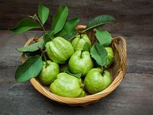 Guava Leaves Face Packs For Oily Skin In Kannada