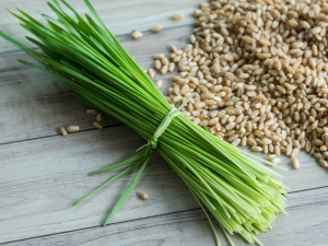 Beauty Benefits Of Barley Grass Juice For Skin And Hair In Kannada